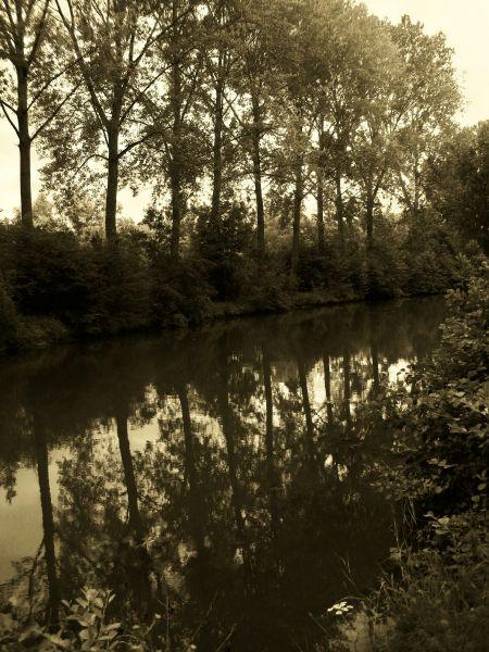 reflet3.jpg