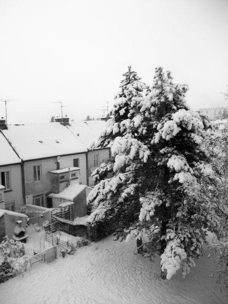 neige51.jpg